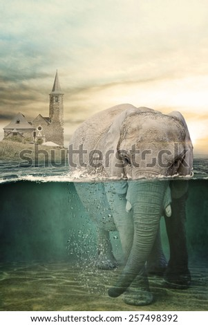 surreal artistic image that represent a elephant in underwater,  - stock photo