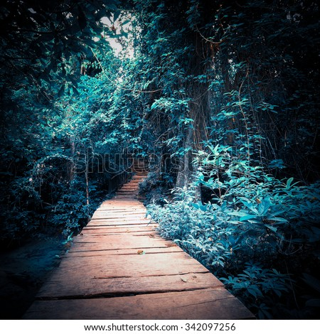 Surreal colors of mystery night at deep fantasy forest. Wooden road path way through tropical trees. Concept landscape for mysterious background - stock photo