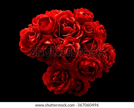 Surreal dark chrome bush of red rose flowers macro isolated on black - stock photo