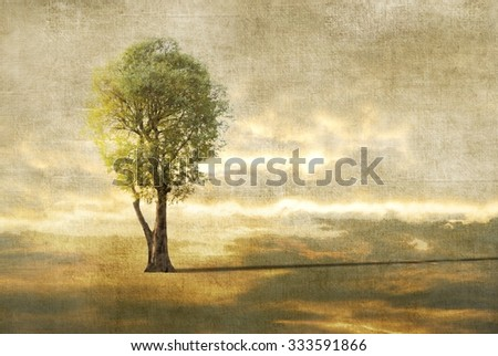 Surreal landscape with lonely tree and clouds  - stock photo