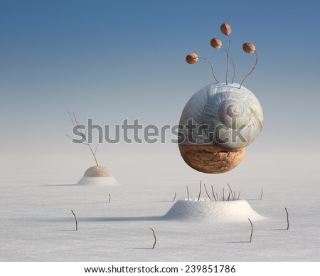 Surreal winter artistic image of a snail and walnut - stock photo