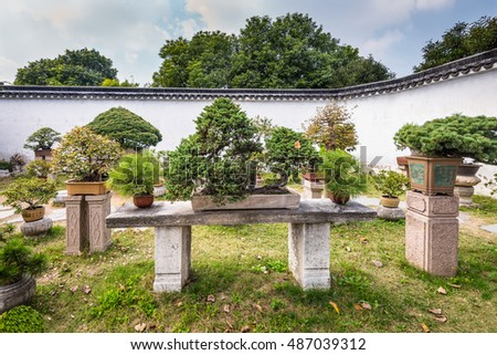 Suzhou, China - October 23, 2013: Bonsai trees in the Humble Administrator's Garden, a Chinese garden in Suzhou, a UNESCO World Heritage Site.
