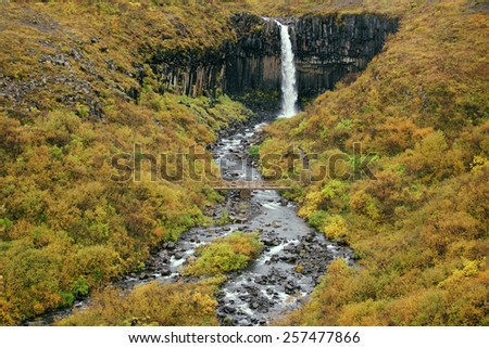Svartifoss, Black Waterfall in Autumn, Iceland