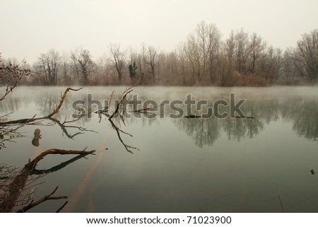 Swamp or lake with some fallen trees with mist in winter season - stock photo