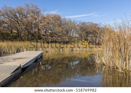 Swampy Lake In Autumn