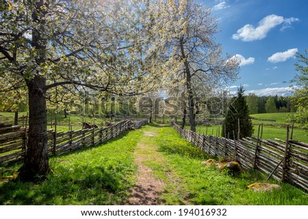 Sweden at springtime - a sunny day in the countryside of Smaland in early May - stock photo