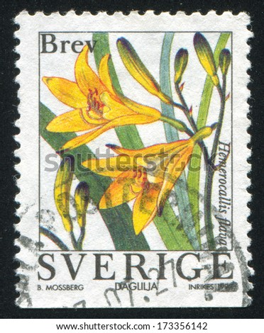 SWEDEN - CIRCA 1997: stamp printed by Sweden, shows Lemon Lily, circa 1997