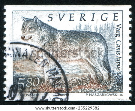 SWEDEN - CIRCA 1998: stamp printed by Sweden, shows wolf, circa 1998 - stock photo