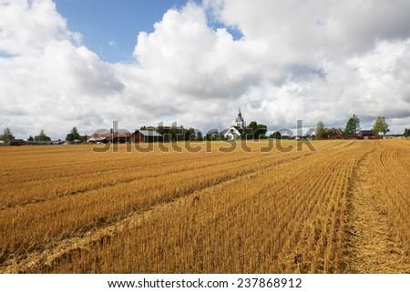 Swedish country landscape - stock photo