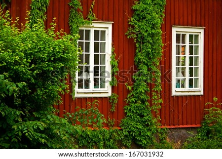 Swedish red wooden house with climbing plants and window with white frames.