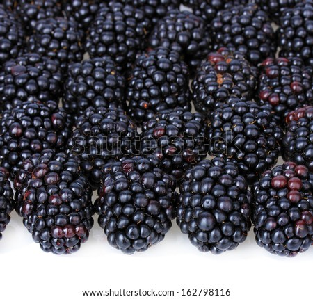 Sweet blackberries on white background