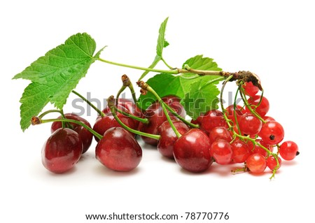 sweet cherries and currant isolated on white background