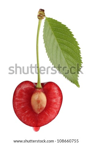 Sweet cherries isolated on white