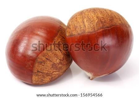 Sweet chestnut on white background.  - stock photo