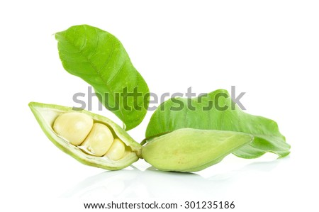 sweet chestnuts (Sterculia monosperma) on white background. - stock photo