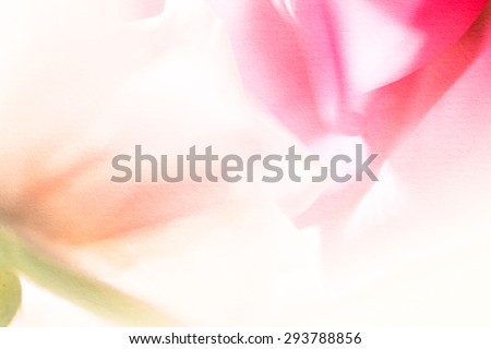 sweet color roses in soft and blur style on mulberry paper texture - stock photo