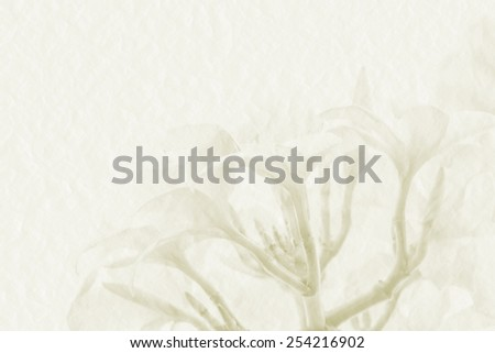 Sweet flower on mulberry paper on white background for spa