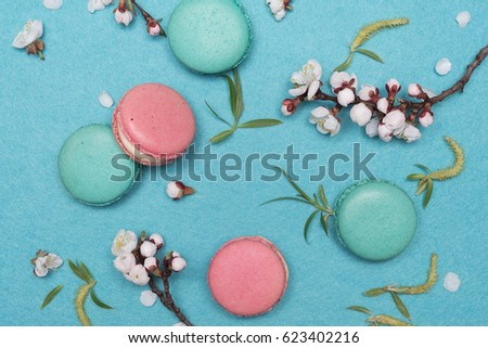 Sweet French macaroon dessert on a turquoise background made of felt. Branches of apricot tree with white flowers. Flat layout, top view