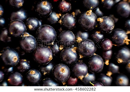 Sweet fresh black currant top view, currant background, texture - stock photo