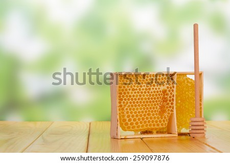 Sweet honey with honey dipper on green blurred background - stock photo