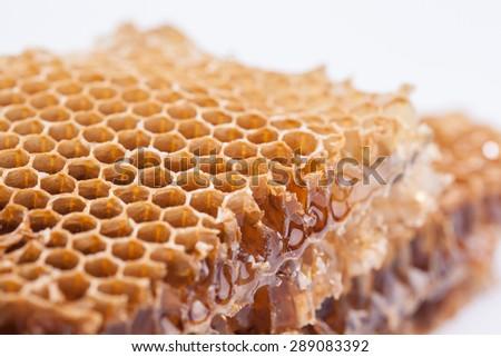 sweet honeycombs, close up image - stock photo