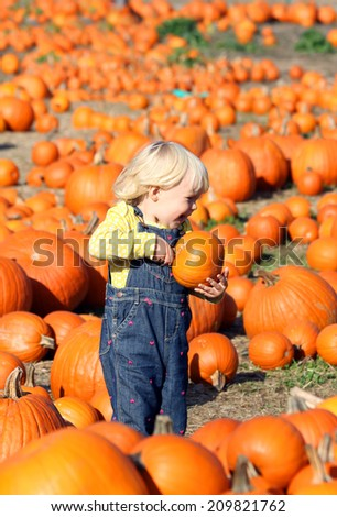 Sweet little girl on the pumpkin patch  - stock photo