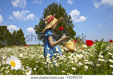 Sweet little girl pick a flowers in a wild meadow with poppies and daisies, - stock photo