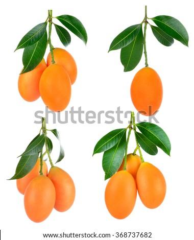 sweet Marian plum thai fruit isolated on white background (Mayongchid Maprang Marian Plum and Plum Mango,Thailand) - stock photo