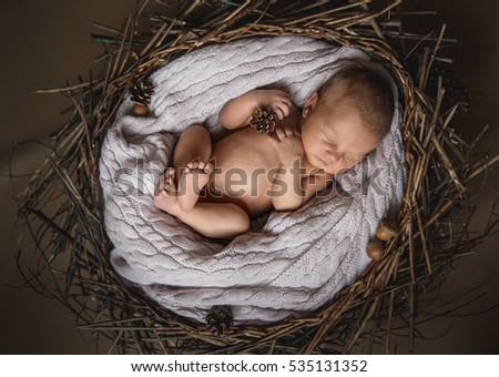 Sweet newborn baby sleeping in a wooden nest