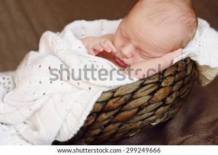 sweet newborn baby sleeping in the  basket - stock photo