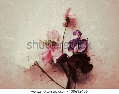 Sweet peas with copy space - stock photo