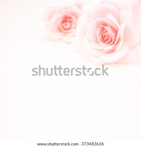 sweet pink roses in soft and blur style on mulberry paper texture for romantic background - stock photo