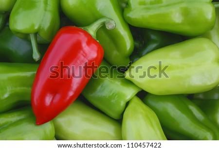 Sweet red pepper against green pepper - stock photo