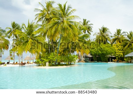 Swimming pool with palm trees, Maldives - stock photo