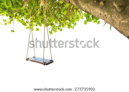 Swing hang on tree isolated on white background - stock photo