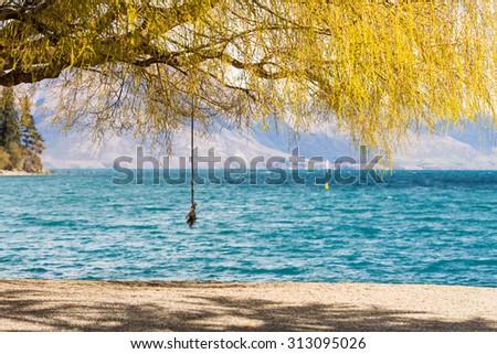 Swing under the three at Queenstown Beach, Queenstown, New Zealand - stock photo