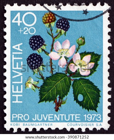 SWITZERLAND - CIRCA 1973: a stamp printed in the Switzerland shows Blackberries, Rubus Fruticosus, Fruit of the Forest, circa 1973 - stock photo