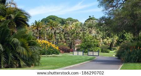 Sydney botanical gardens - stock photo