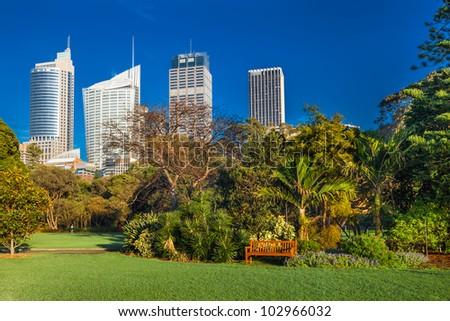 Sydney botanical gardens with highrises behind, Australia - stock photo