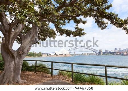 Sydney harbor in Australia - stock photo