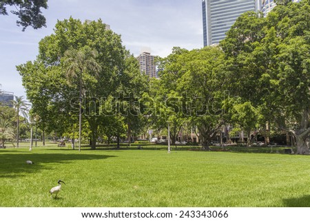 Sydney's Hyde Park - stock photo