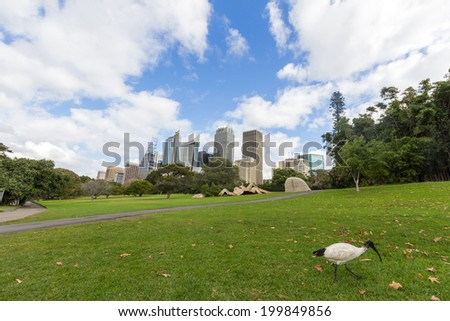 Sydney Skyline view from the Royal Botanic Gardens. It is the most central of the three major botanical gardens open to the public in Sydney. - stock photo