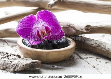 symbols of pure beauty at the spa - stock photo