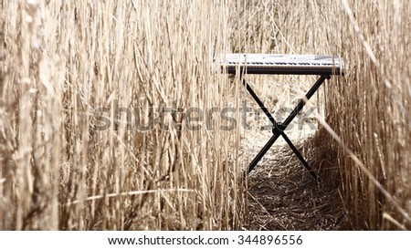 synth rack stands alone in the reeds - stock photo