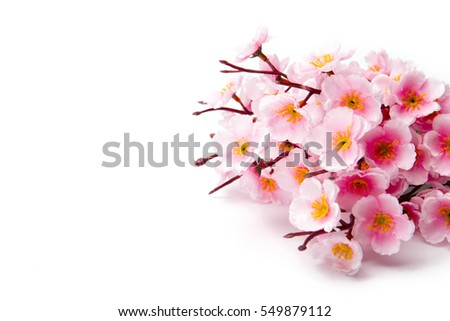 Synthetic Pink cherry blossom sakura on white background