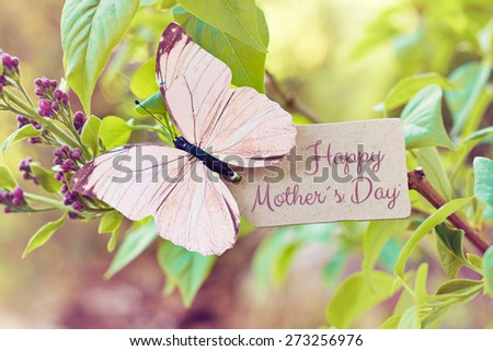 syringa nature greeting card background - happy mothers day - stock photo