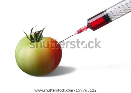 syringe injecting on unripe tomato forcing it to ripe faster