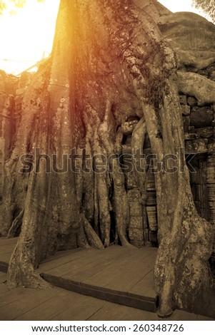 Ta-Phrom castle. Angkor Thom, Cambodia. Vintage filter. - stock photo