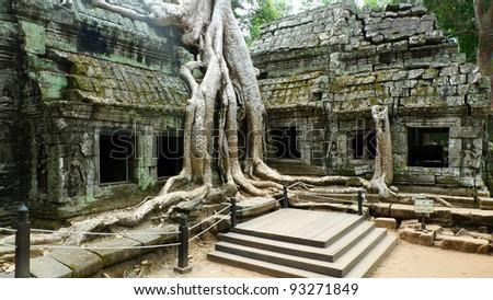 Ta Prohm Temple, Angkor, near Siem Reap, Cambodia - stock photo