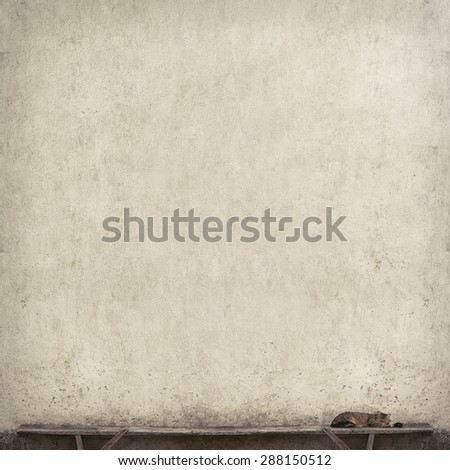 Tabby cat laying on the bench near the wall, vintage style  - stock photo